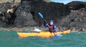 Sea Kayak from the Blue Lagoon
