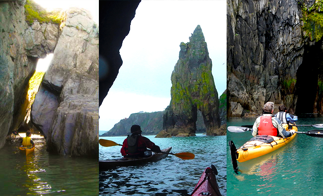 mayberry-kayaking-with-seals-dolphins-puffins-wales